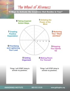 Wheel of Aliveness Coaching Tool