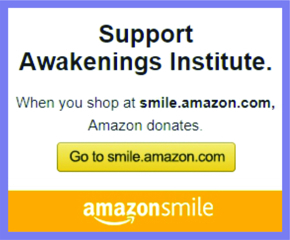 Support Awakenings Institute